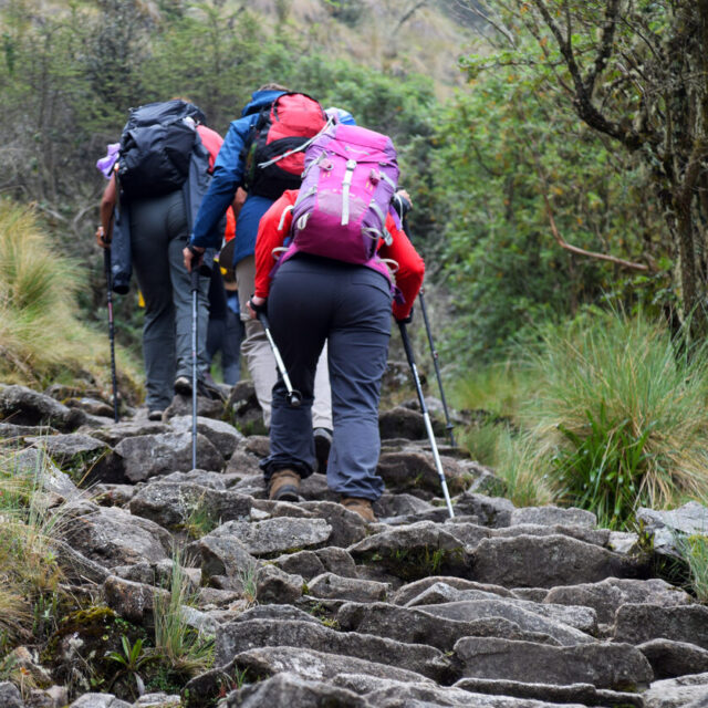 Tourists with backpacks and trekking poles going up the steep steps in the mountains. Steps part of the historical Inca trail which leads to Machu Picchu. Photo taken on the Inca trail, Peru on November 3, 2018.