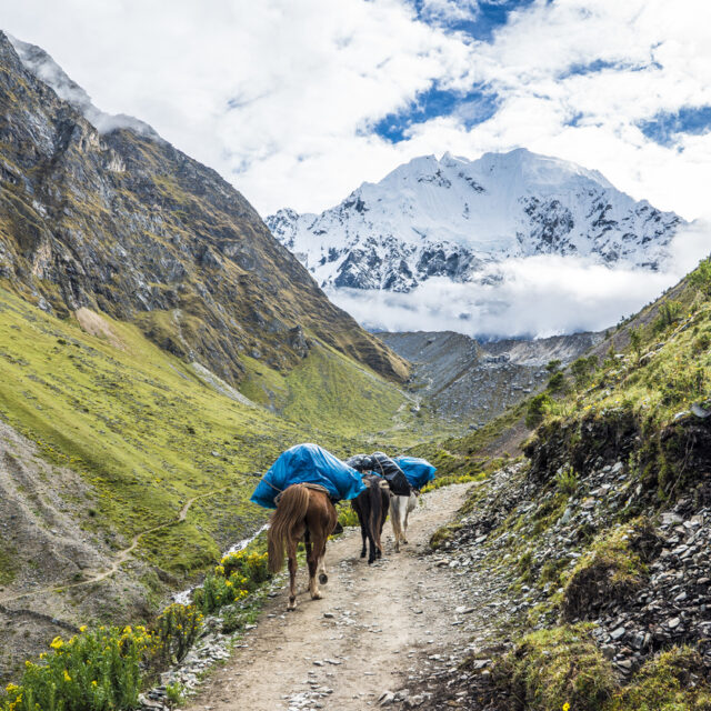 Salkantay Trekking Peru the road to Machu Pichu